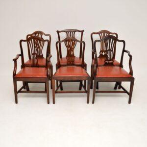 set of 6 antique georgian mahogany dining chairs