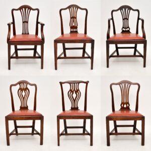 Harlequin Set of 6 Antique Georgian Mahogany Dining Chairs