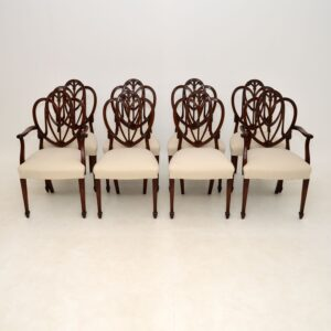 set of 8 antique mahogany shield back sheraton dining chairs